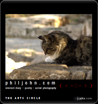 Picture: Cats in Ruins 2; 03/16/2009